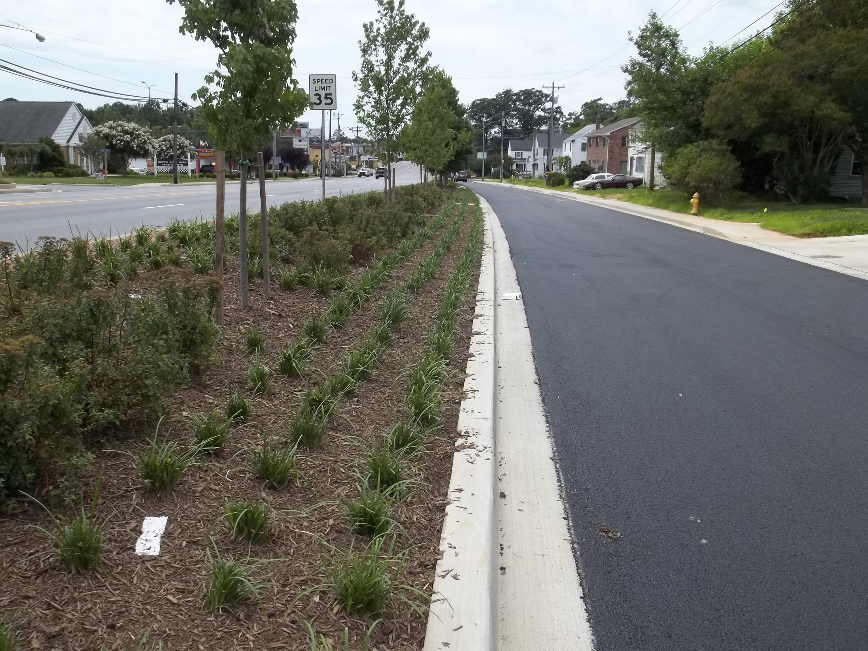 image of revitalization project phase 2 roadway with median and newly planted trees