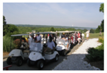 image of golf carts